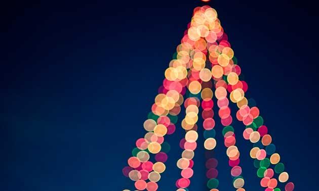 weihnachtsbaum-weihnachtsbeleuchtung-weihnachten.jpg