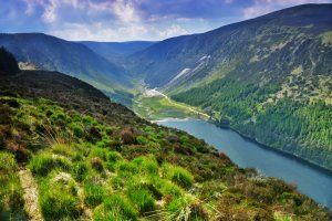 11 wicklow mountains.jpg