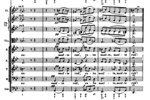 Bach Matthäuspassion.PNG