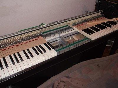 DSCF6980.JPG